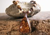 Picture of Bohemian Inca Red Coral Stone Beaded Necklace Cognac Honey