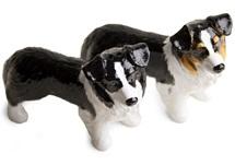 Picture of Border Collie Handmade Mini Cruet Set Black and Tricolour