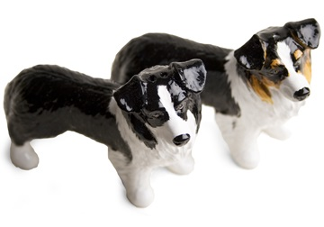 Picture of Border Collie Handmade Mini Cruet Set Black And Tricolour