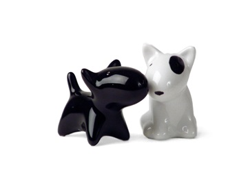 Picture of Bull Terrier Handmade Ceramic Small Cruet Set Black And White
