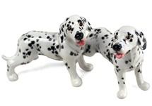 Picture of Dalmatian Handmade Mini Cruet Set Black and White