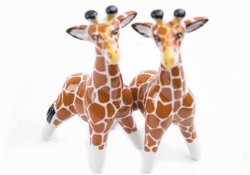 Picture of Giraffe Handmade Mini Cruet Set Orange
