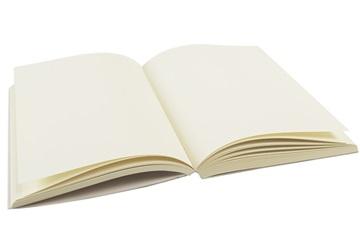 Picture of ilCarta Italian Paper A6 Journal Refill Cream Plain