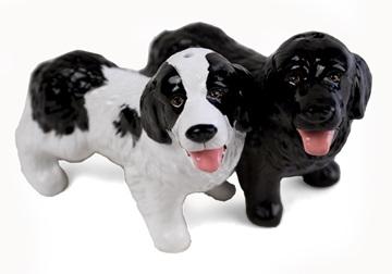 Picture of Newfoundland Handmade Mini Cruet Set Black and White