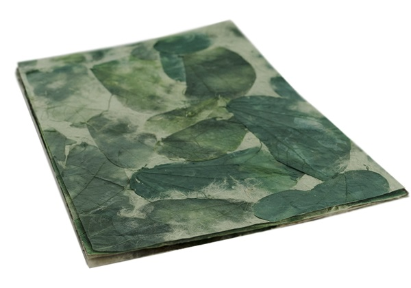 Picture of Petal Teak Leaf A4 Handmade Paper Green
