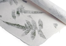 Picture of Petal Fern Poster Handmade Paper Green Pressed