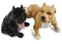 Picture of Pit Bull Terrier Handmade Mini Cruet Set Fawn and Black