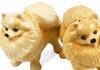 Picture of Pomeranian Handmade Mini Cruet Set Brown