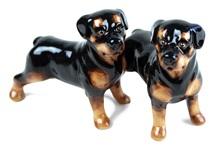 Picture of Rottweiler Handmade Mini Cruet Set Black