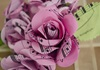 Picture of Scrappy Do Rose Musical Paper Extra Large Embellishment Sweet Pink